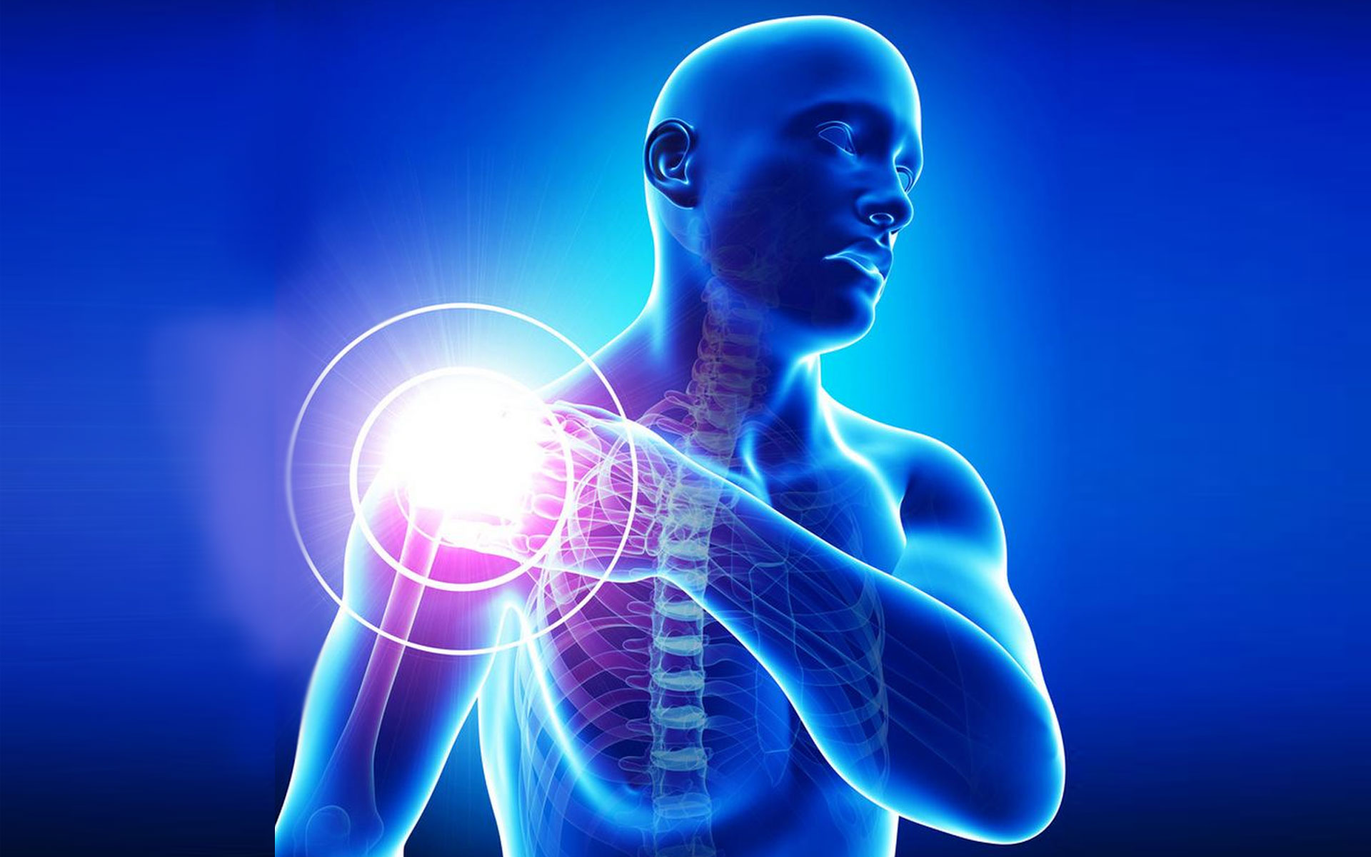 Return to Play Standards for Shoulder Injury